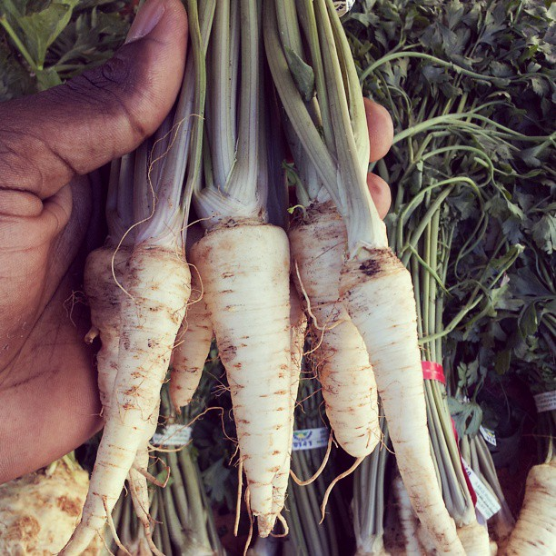 fresh parsnips-from the farmers market to your plate!